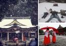 Токио, не видевший снег в ноябре более 50 лет, превратился в настоящую зимнюю сказку.