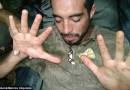Обезьяны спасли туриста, блуждающего 9 дней по джунглям Амазонки.