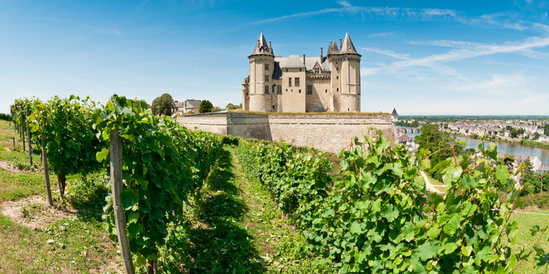Love Rosé? You Need To Try The Light Reds Of The Loire Valley