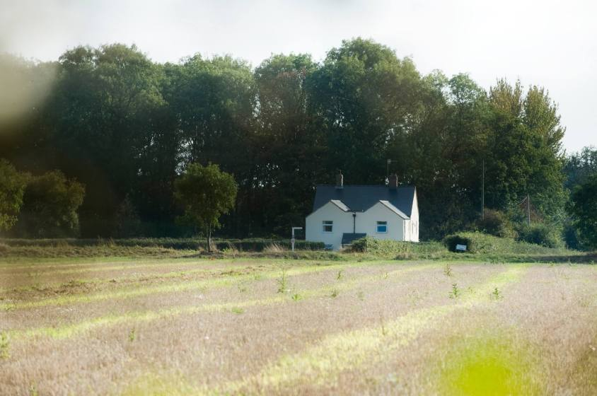 Vine Park Cottage B&B