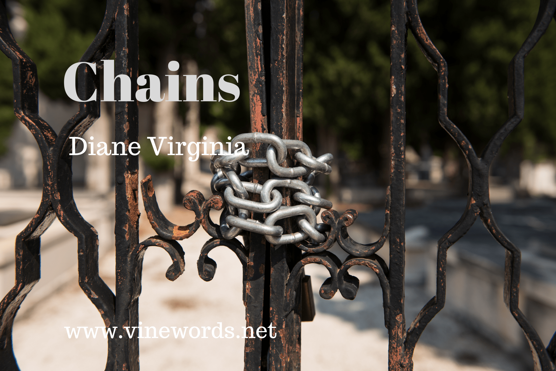 Diane Virginia: Chains
