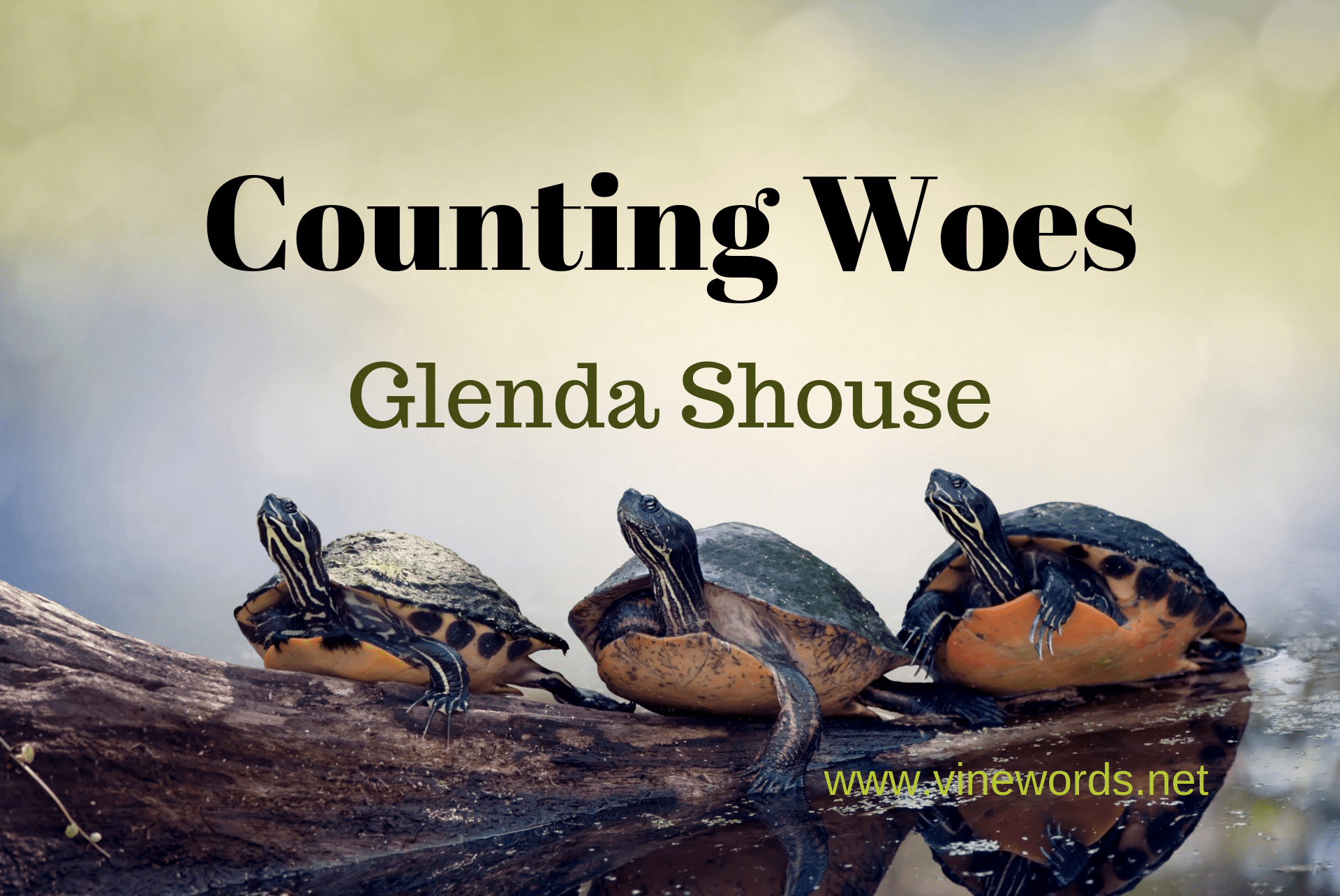 Contributor: Glenda Shouse: Counting Woes