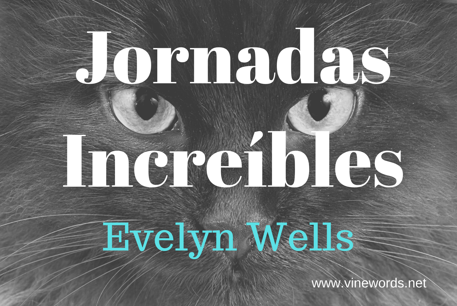 Espanol: Evelyn Wells: Jornadas Increíbles: Incredible Journeys