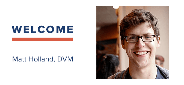VIN Foundation   Supporting veterinarians to cultivate a healthy animal community   Blog   VIN FOUNDATION ANNOUNCES NEW BOARD MEMBER, MATT HOLLAND, DVM