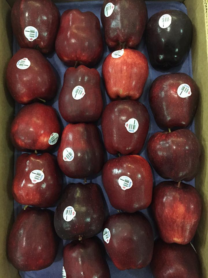 Tao Red Delicious Mỹ - Vinfruits.com