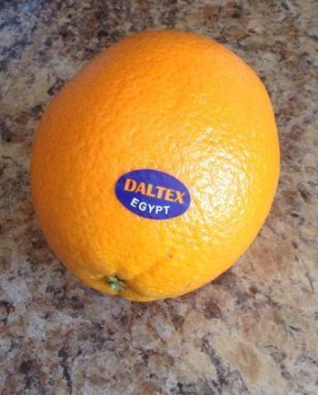 Cam Daltex Ai Cập nhập khẩu - Vinfruits.com