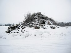 photography snow