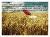 Help!_wallpaper
