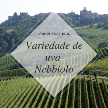 Variedade de uva Nebbiolo