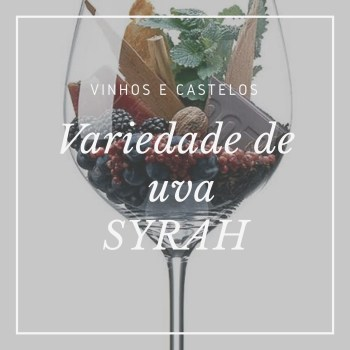Variedade de uva: Syrah