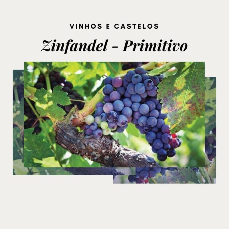 Variedade de uva Zinfandel (Primitivo)