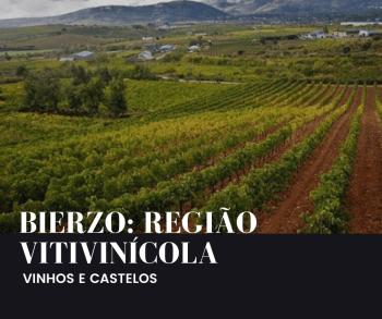Região vitivinícola: Bierzo – Espanha