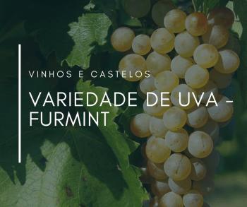 Variedade de uva: Furmint