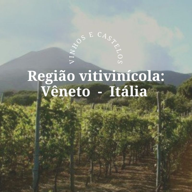 Região vitivinícola Vêneto – Itália