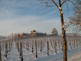 Vista dell'azienda Pusterla in inverno dal vigneto