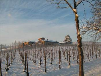 Pusterla-farm-in-winter