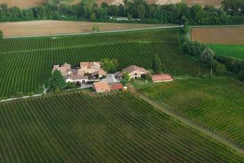 Pusterla-farm-view-from-above