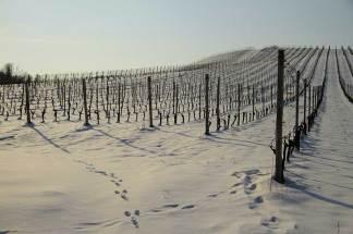 View-of-Pusterla-farm-in-winter