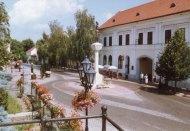El Furmint de Tokaj seco está entrando en las grandes ligas de los vinos blancos.