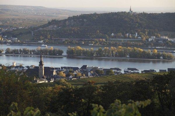 Rheingau y el Riesling presentan armonía de espectacular paisaje y vino majestuoso.