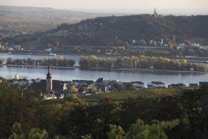 Vista de Rüdesheim - Cortesía de Deutsches Weininstitut GmbH