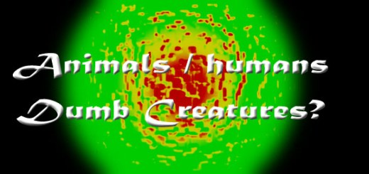 Dumb Creatures