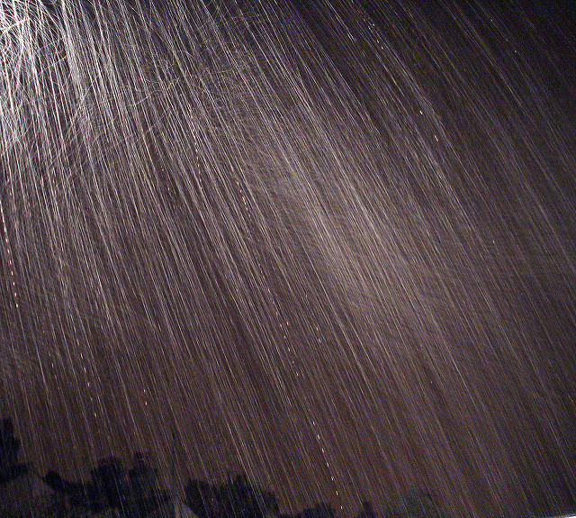 A Summer shower
