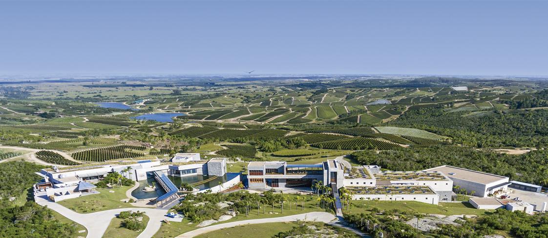 Лучшие винодельни мира Уругвай Bodega Garzón