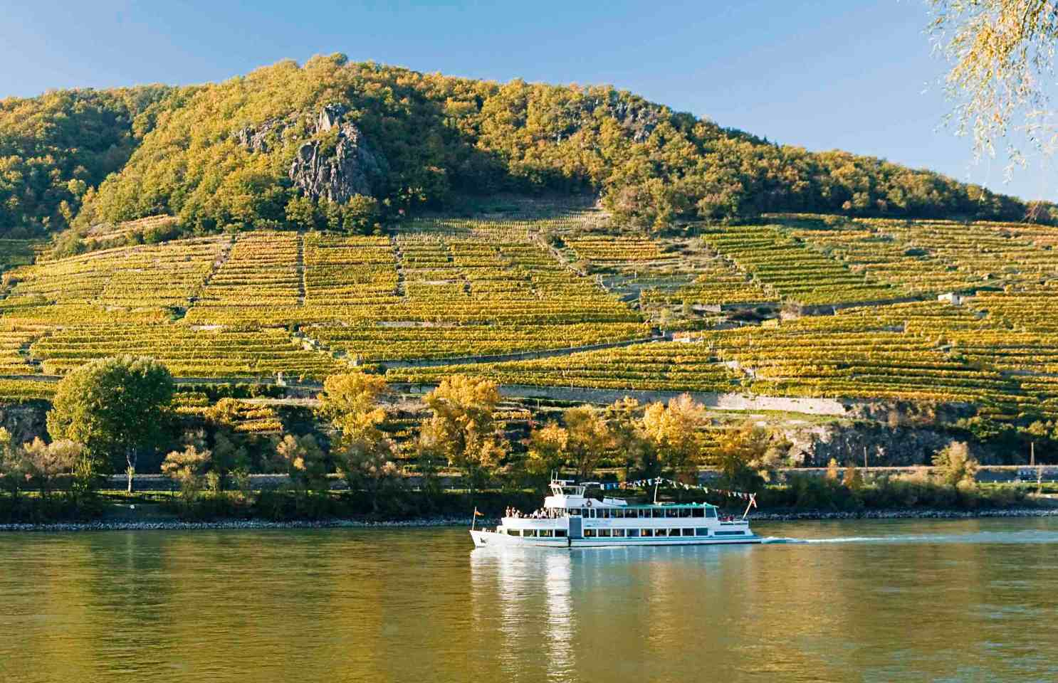 Лучшие винодельни виноградники мира Европы Австрия Вахау