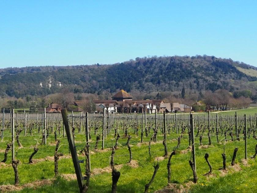 Английские вина: Denbies Денбиз