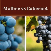Malbec vs Cabernet: With My Faves from Both!