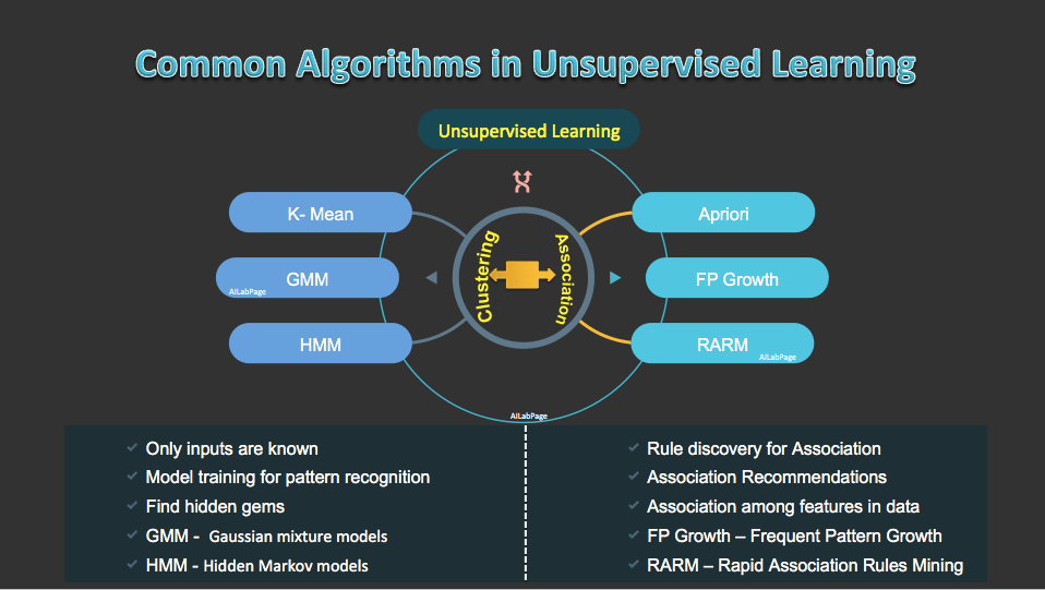 Common Algorithms in Unsupervised Learning