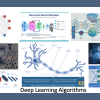 Deep Learning Algorithms — The Basic Guide