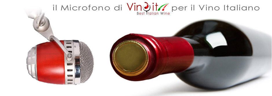 vinoit-the-best-italian-wine