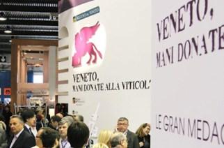 Vino Veneto - Successo al Vinitaly 2013  su Vionoi.IT - Best Italian Wine