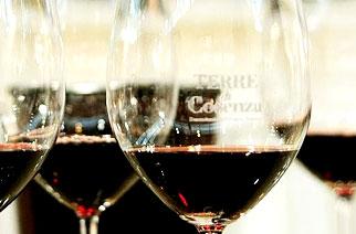 Terre di Cosenza Siaft Wine 2013: aziende soddisfatte delle opportunità d'affari