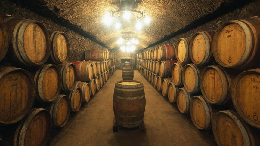 Nasce l'Osservatorio del Vino
