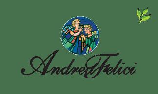 ANDREA FELICI