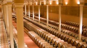 La crianza del vino 1