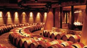 La crianza del vino 2