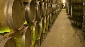 Región vinícola Sicilia (Italia)