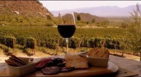 La ruta del vino, un viaje imperdible y fantástico por el norte argentino