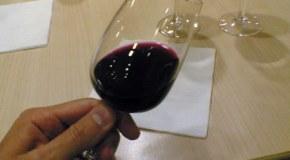 Las claves en una gran cata de vinos