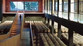 Actividades de interés alrededor del vino