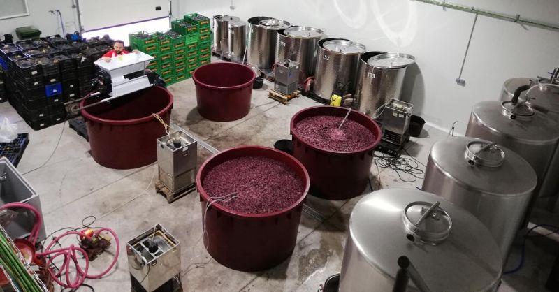vinos de garaje garage