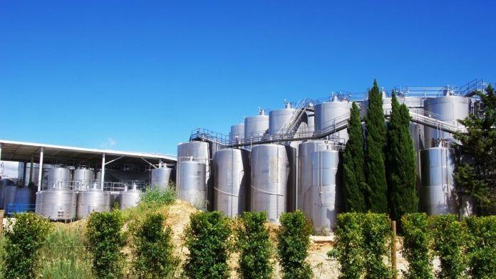 medida autorregulacion mercado vino