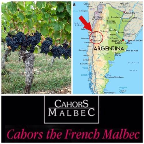 "Spiritual Homes: Cahors and Mendoza (Photo credits: Wine Folly grapevine; Wines of Argentina map; Lot Cycling Holidays ""Cahors Malbec"")"