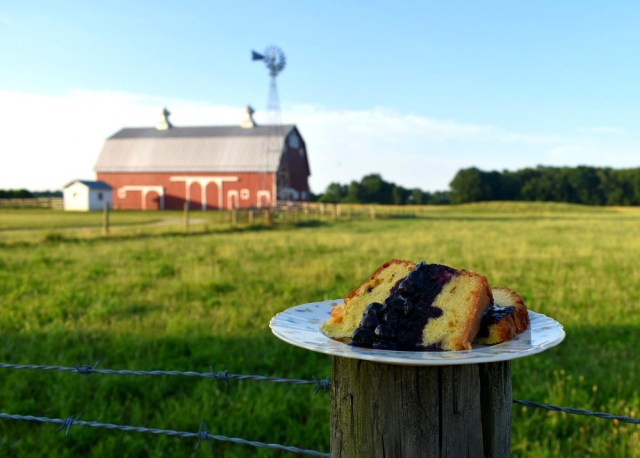 Fresh pound cake topped with blueberry compote with The Farm's red barn in the background.