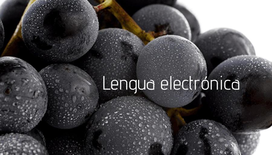 La lengua electrónica para predecir los futuros vinos