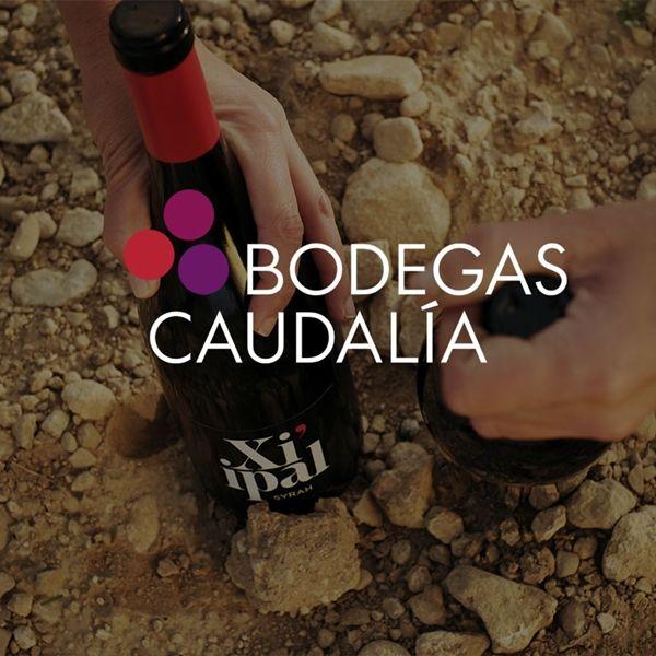 Bodegas Caudalía. Vibraciones y vinos diferentes. La Historia.
